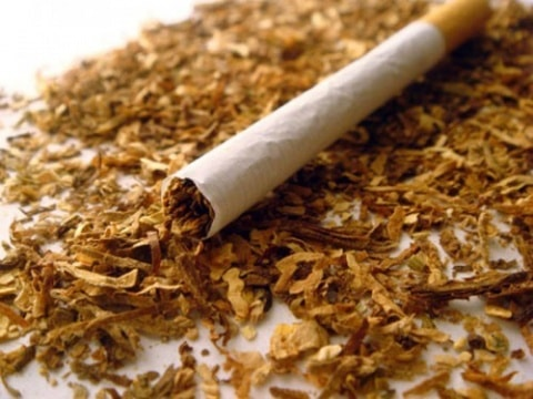 cigarette and tobacco shavings